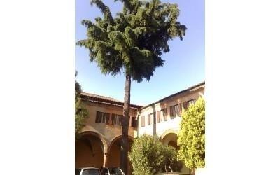 Parcheggio interno Casa di riposo Francescana
