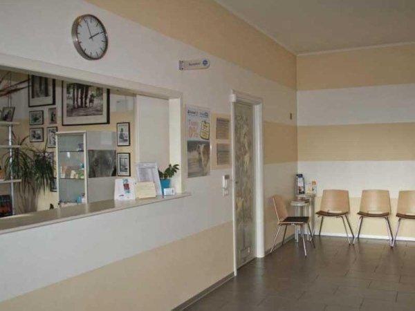 interno veterinario Crema