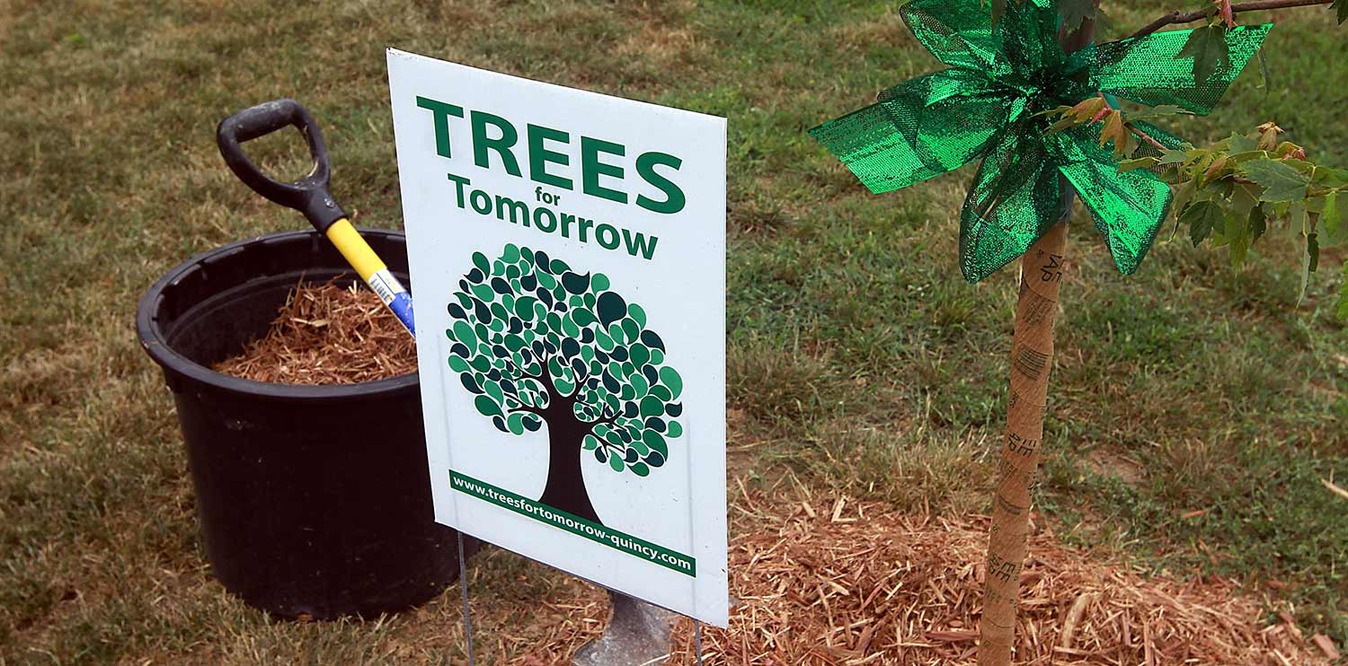 Trees for Tomorrow - Quincy, IL