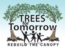 Trees for Tomorrow - Build the Canopy - Quincy, IL
