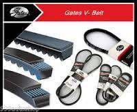 Gates belts