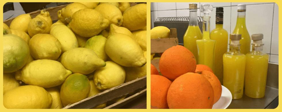 produzine artigianale limoncello