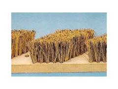 Bran and wheat brush