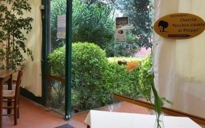 restaurant with outdoor garden viareggio