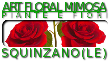 vendita piante e fiori, allestimenti floreali, bouquet da sposa
