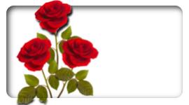 centritavola in fiore, allestimenti floreali per galà, composizioni floreali per compleanni