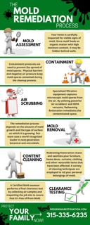 Mold Remediation Process Infographic