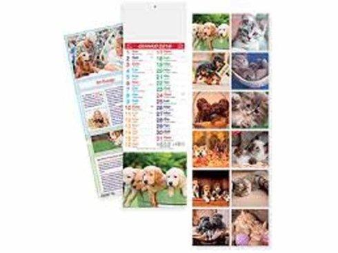 calendario fotocolor