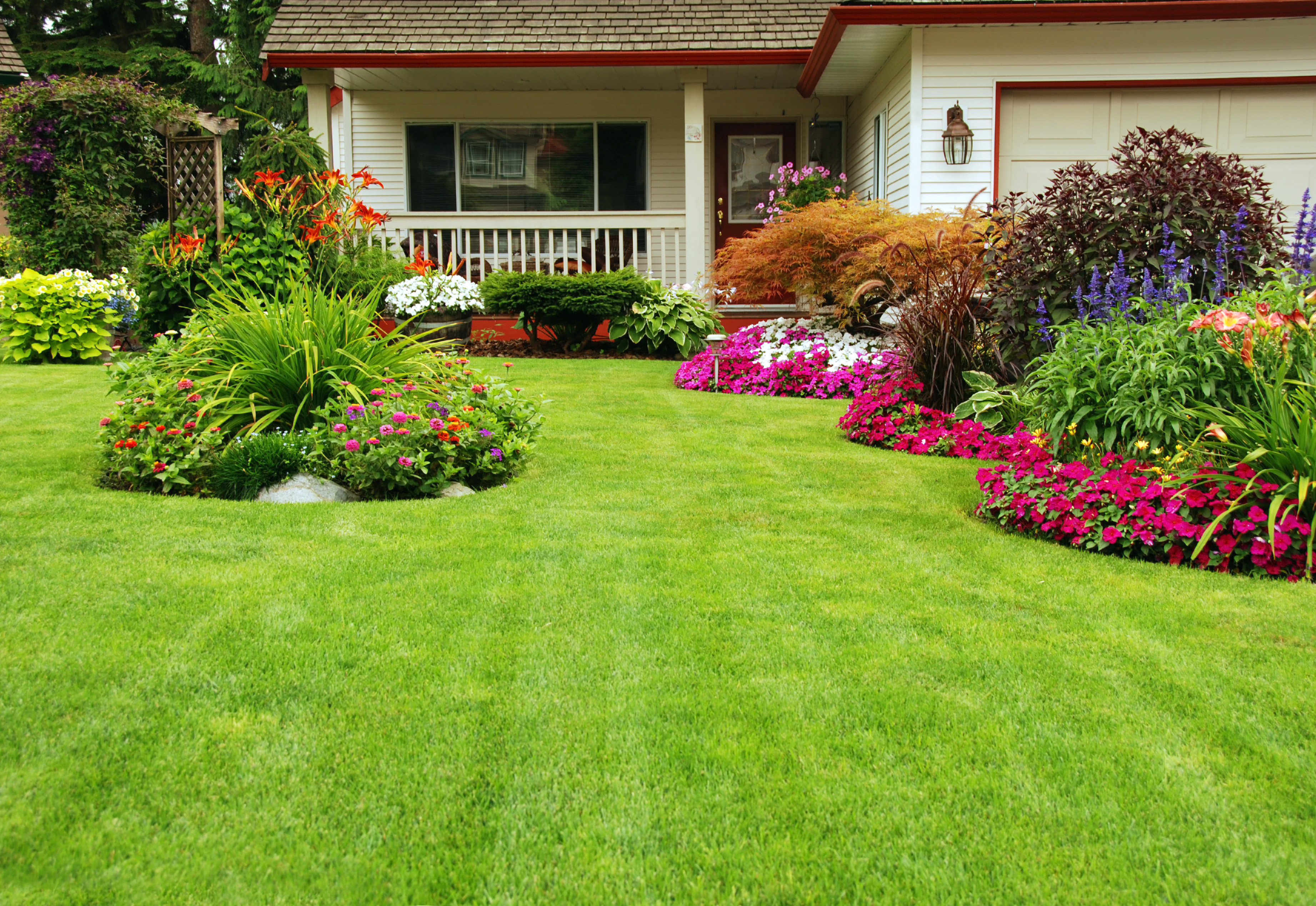 Landscaped garden with maintained lawn in Independence, KY