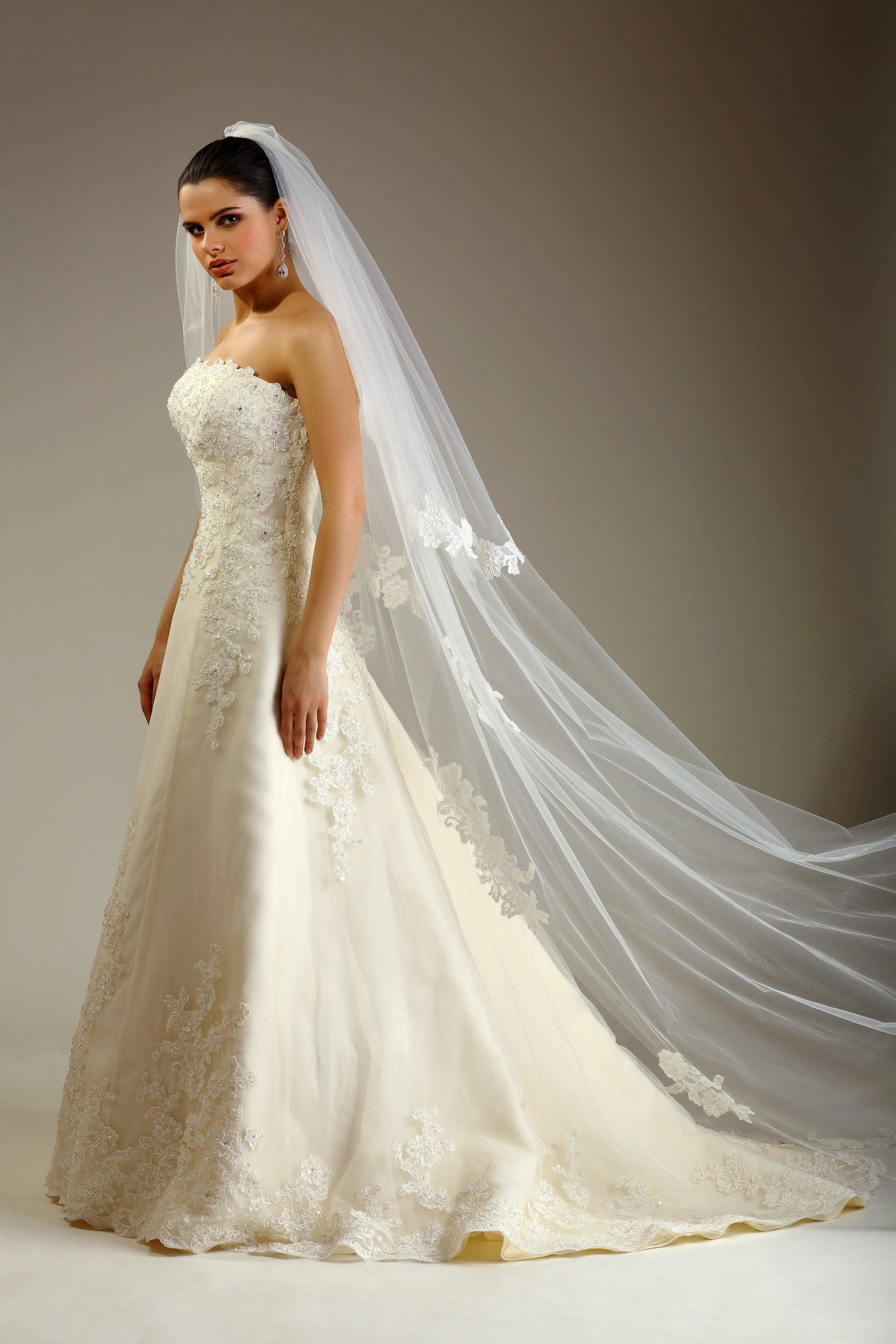The dry cleaning and laundry co offers dry cleaning services for Dry cleaning for wedding dresses price