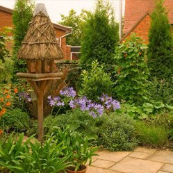 Patio and traditional planting