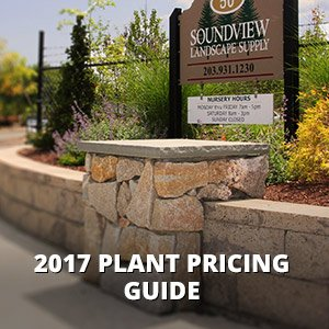 2015 Pricing Guide