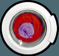 Sterilizzazione Torino