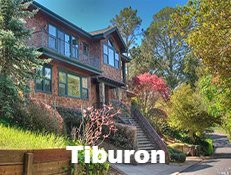 Tiburon Home Inspection