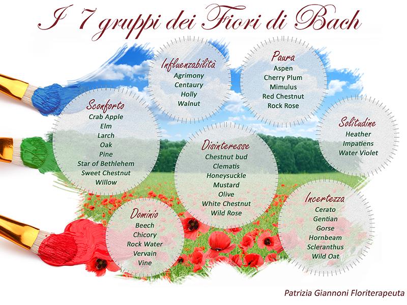 i 7 gruppi dei fiori di bach