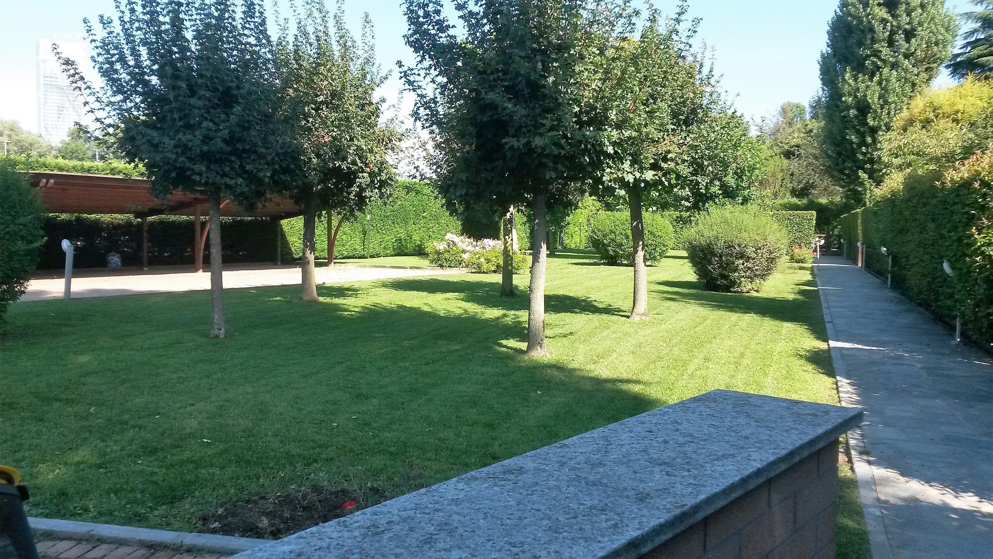 giardino curato con alberi