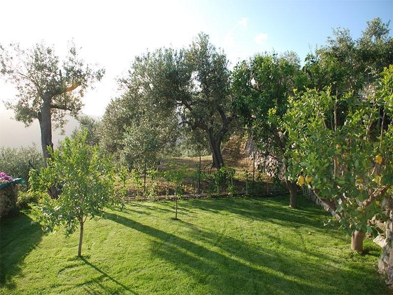 Idea Verde -Giardino6