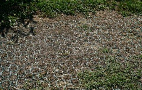Manutenzione del verde pubblico e parchi privati a Savona