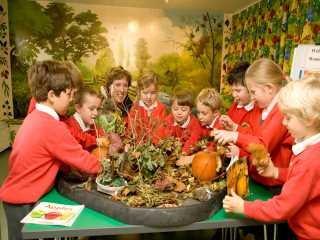 Children around plant