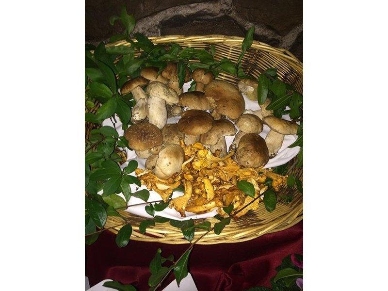 funghi di stagione