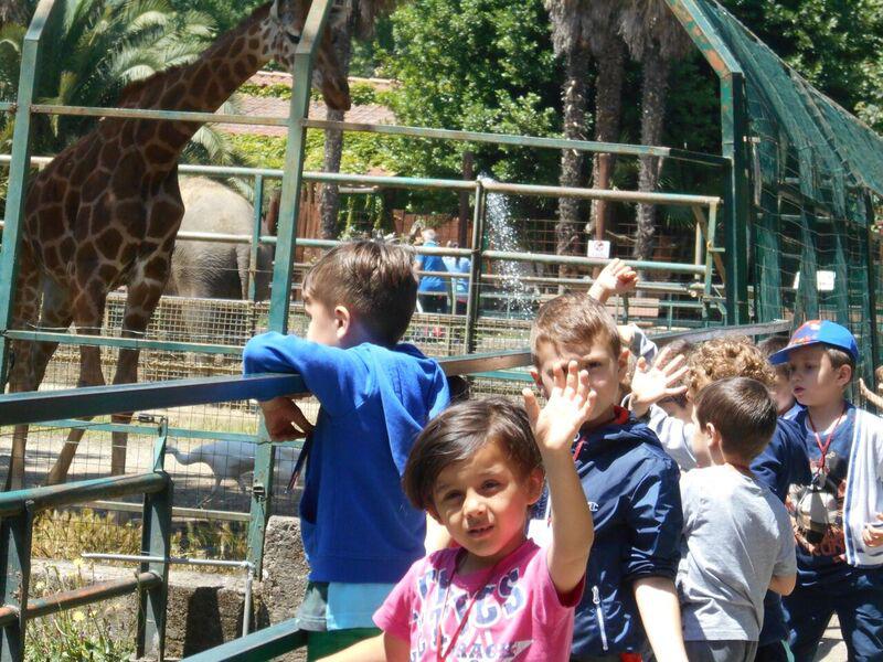 bambini allo zoo