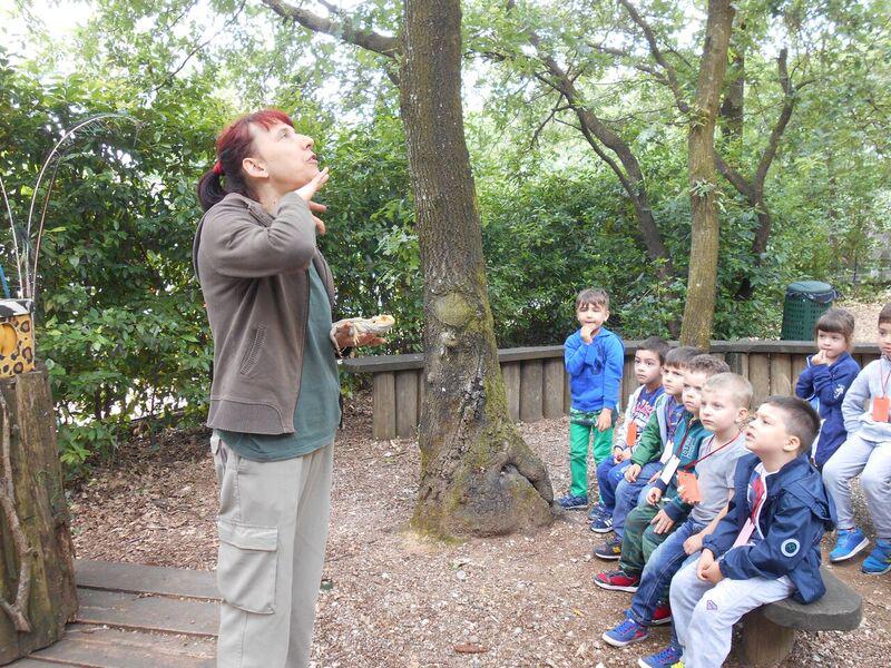 educatrice mostra a bambini un esemplare di ramarro