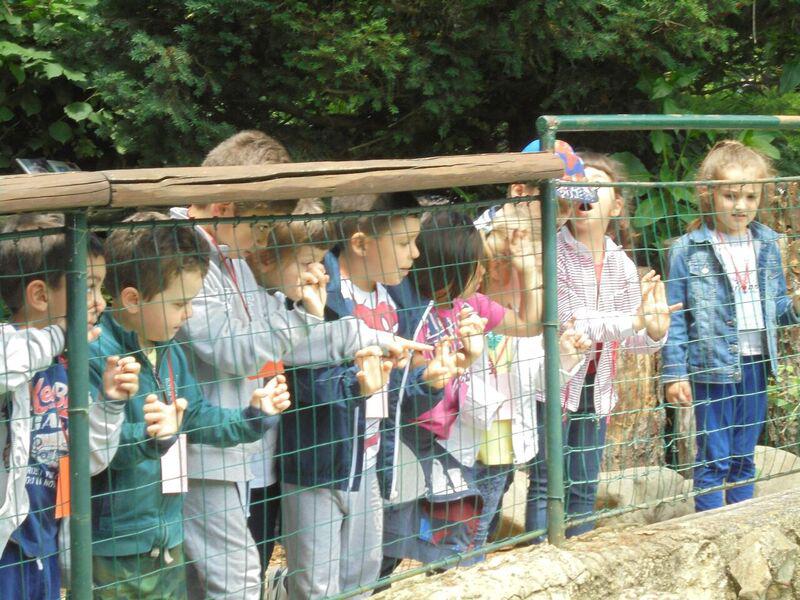 bambini guardano dentro a una gabbia dello zoo
