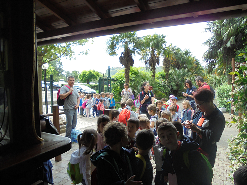 bambini in coda allo zoo