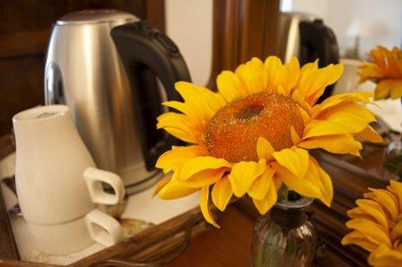 fiore con bollitore
