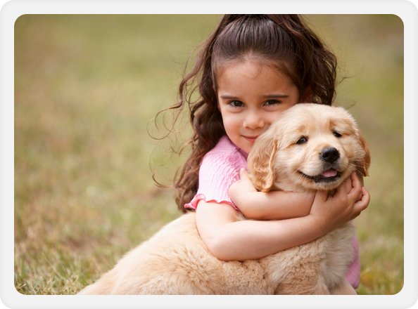 PETS Passports - Herne Bay, Deal, South East Kent - Animal House Veterinary Services - child hugging dog