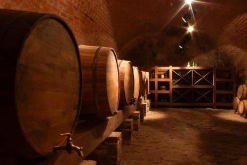 Vigneti per produzione vino