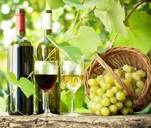 Vigne uva bianca