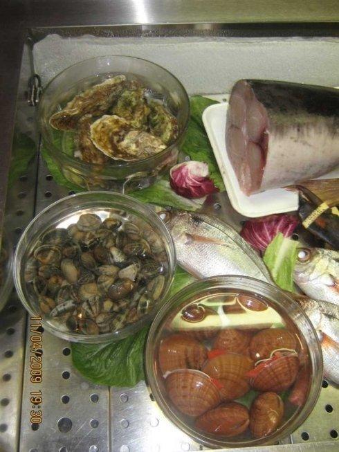 ostriche e molluschi