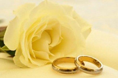 una rosa bianca e due anelli d'oro