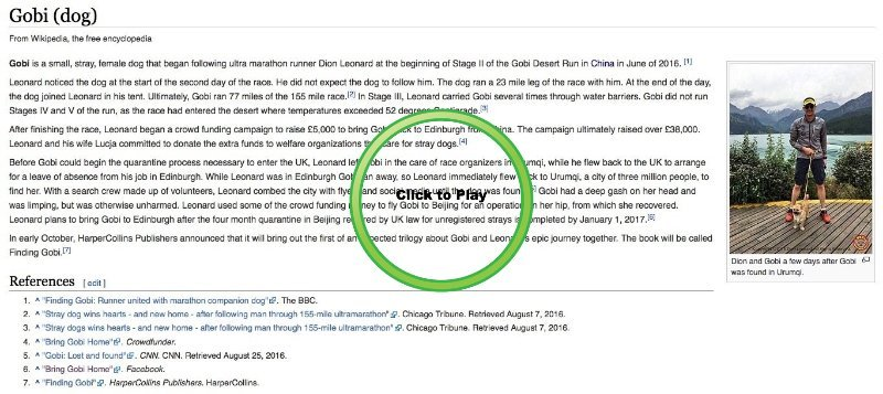 Dion Leonard and Gobi the Dog, Wikipedia