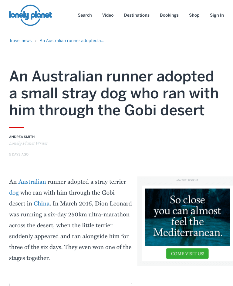 Australian Dion Leonard, UItra marathon runner, Gobi the dog, Gobi Desert, Lonely Planet