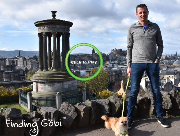 Finding Gobi Edinburgh Pupdate Easter 2017 Dion Leonard Gobi the Dog