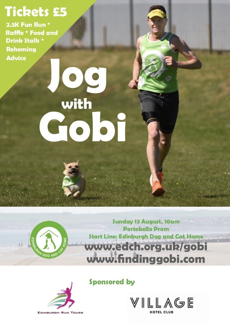 Jog with Gobi, Edinburgh Dog and Cat Home, Dion Leonard, Finding Gobi, Adopt Don't Shop