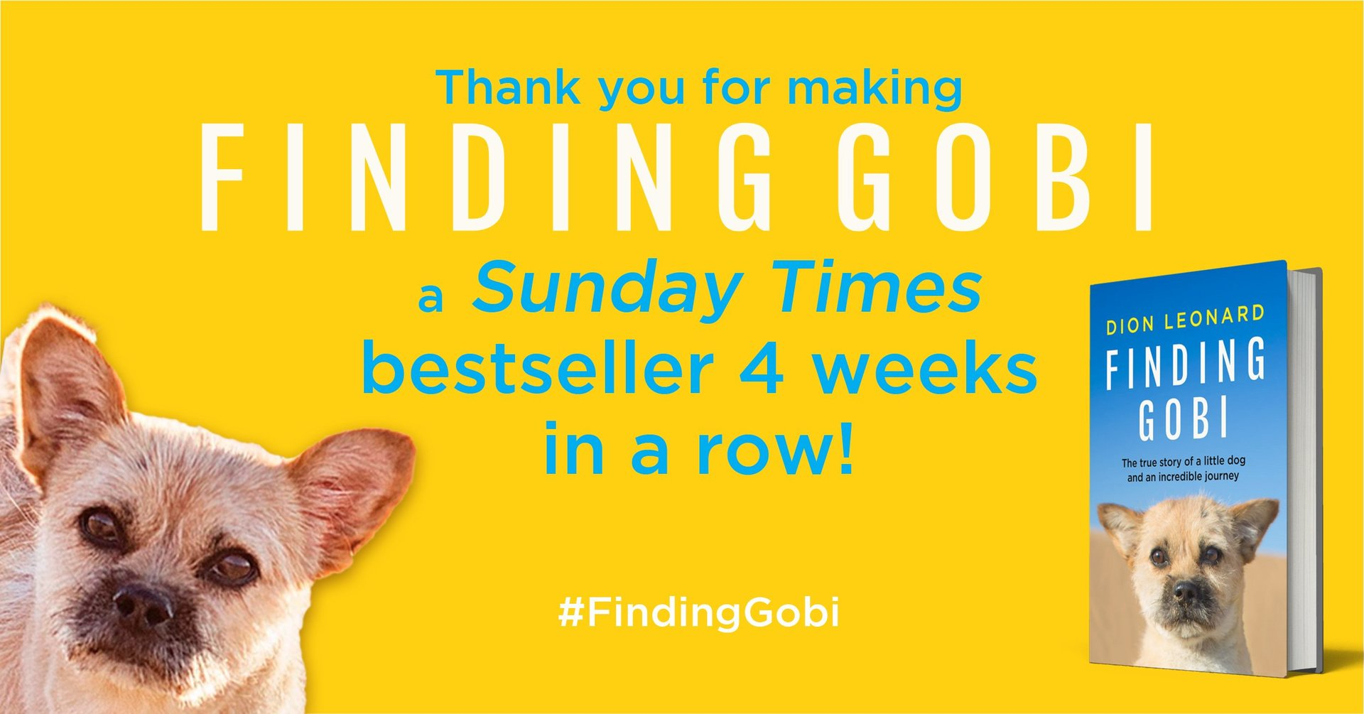Dion Leonard, Finding Gobi, Sunday Times Bestsellers List, Gobi the Dog