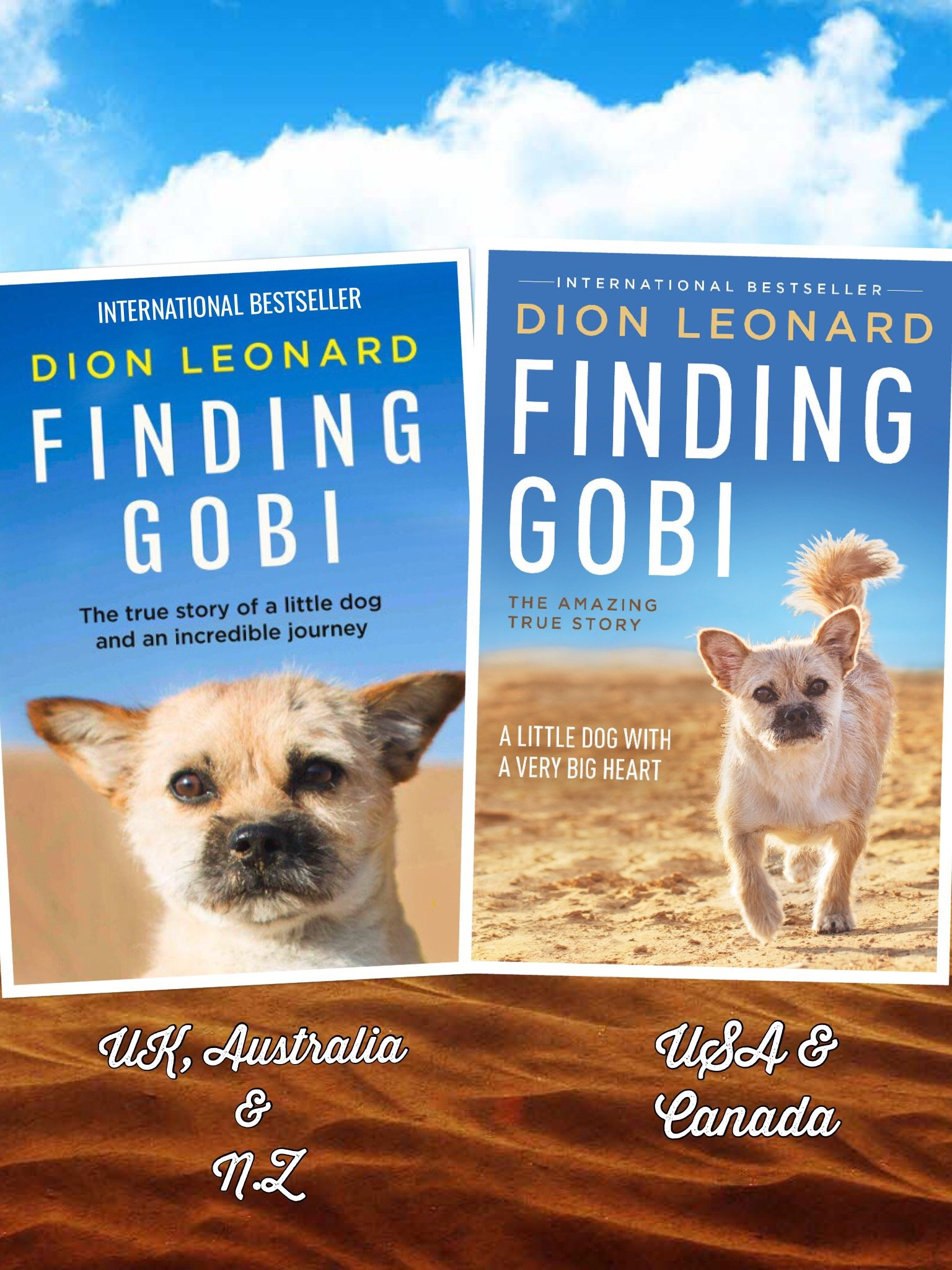 Finding Gobi Dion Leonard Hardback Paperback Book Cover, Finding Gobi  Harper Collins, Photo Finding Gobi Jasper James, Tommy Nelson, W Publishing
