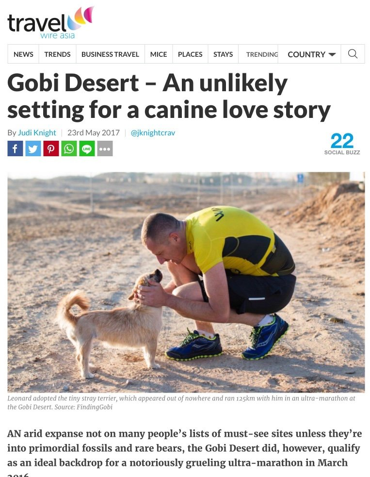 Gobi Desert, Canine, Love Story, Dion Leonard, Gobi the Dog, Travel Wire Asia, Judi Knight