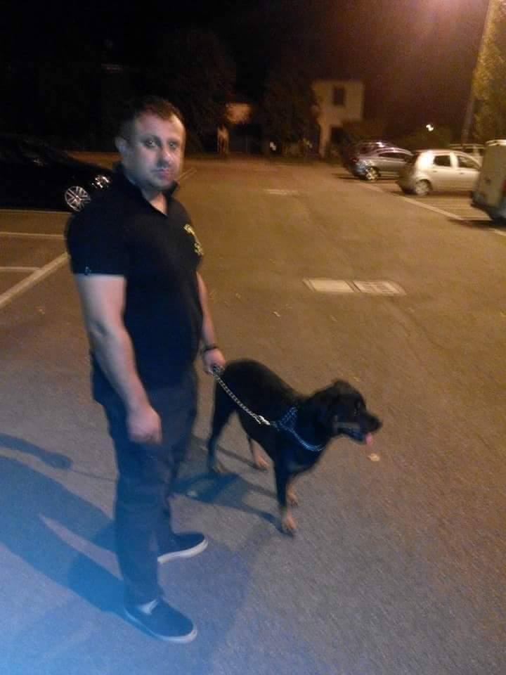 guaedia sicurezza e cane