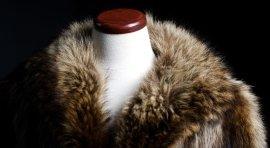 pellicce, abbigliamento di classe