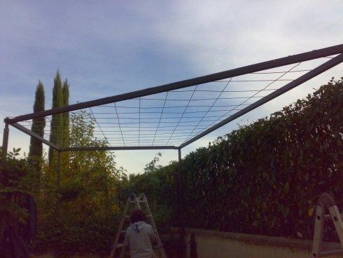 struttura sostegno per le piante
