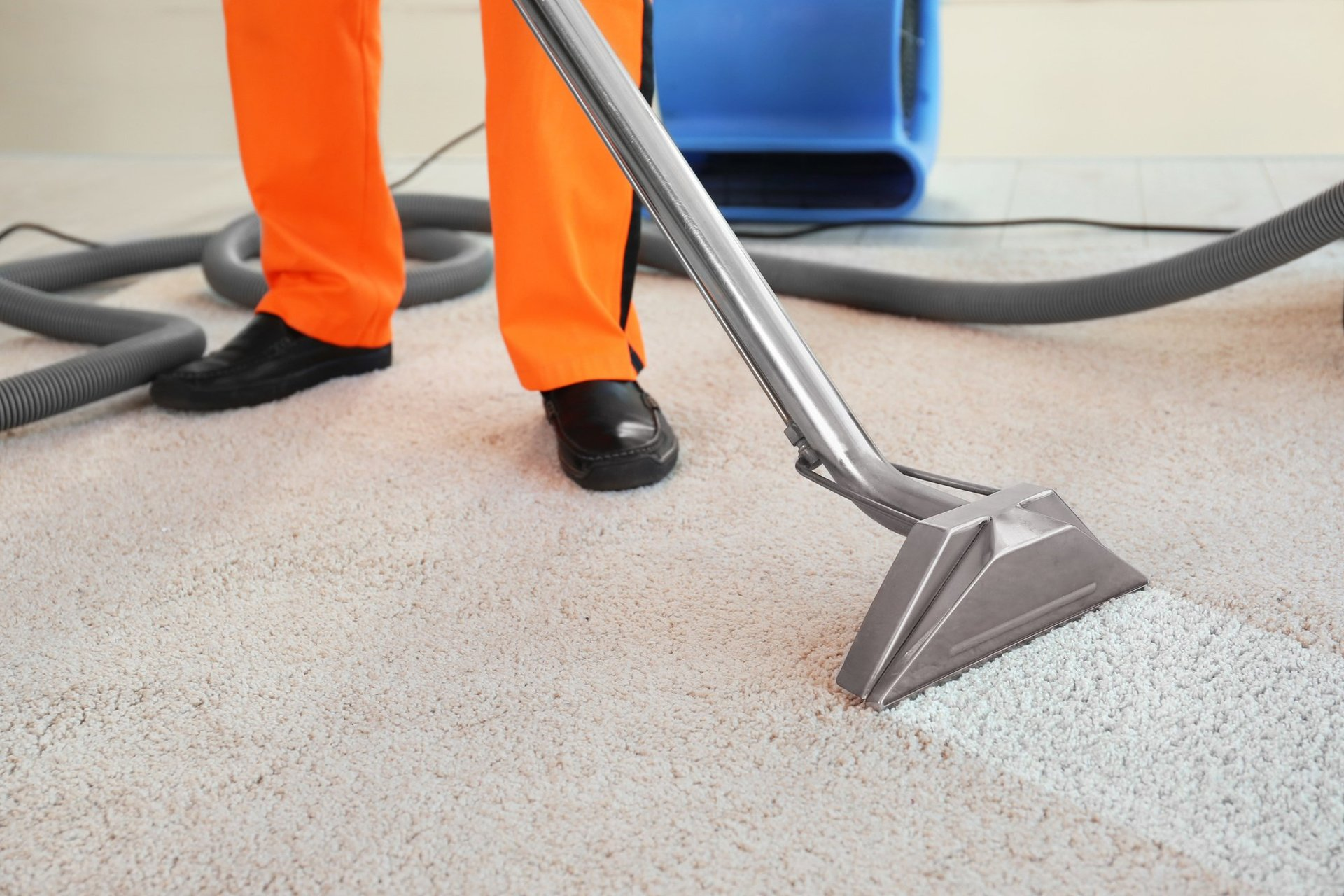 5 benefits of hiring a carpet cleaning business solutioingenieria Choice Image