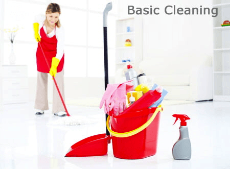 Basic Cleaning in Chicago