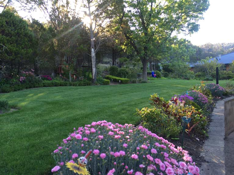 andrews lawn mowing and ground maintenance clean service
