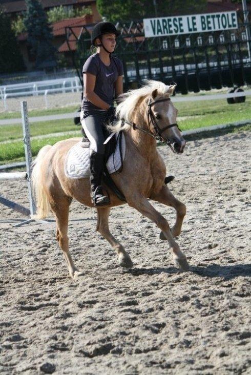 Cavalcata con pony