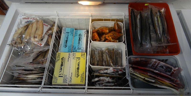Fish supply