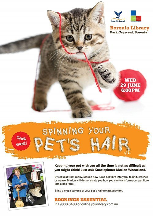 Spinning your  pets hair leaflet